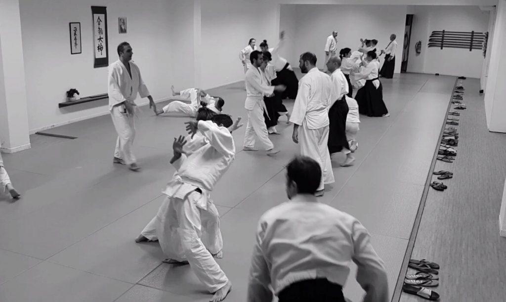 σεμινάρια aikido